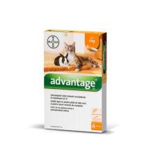 Advantage 40 Cat/Rabbit, 0,4 ml x 4 tubus