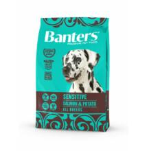 VISÁN BANTERS DOG SENSITIVE  SALMON & POTATO 3 kg