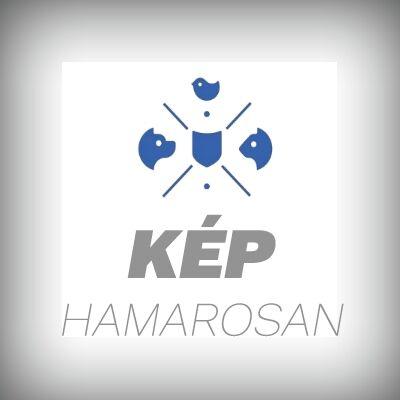 Frontline TRI-ACT spot -on oldat 10-20  kg-os kutyák részére 3 x 2 ml